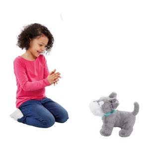 Animagic – Tilly, el terrier